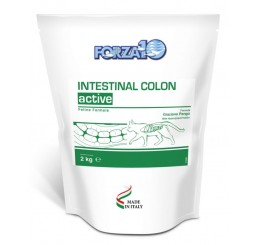 Forza10 Gatto Intestinal Colon  Kg.2 (ex colitis fase 1)